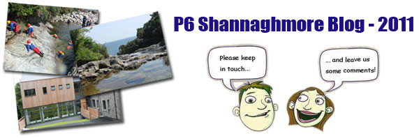 Shannaghmore Blog